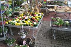 Blumenhaus_Gatter_12